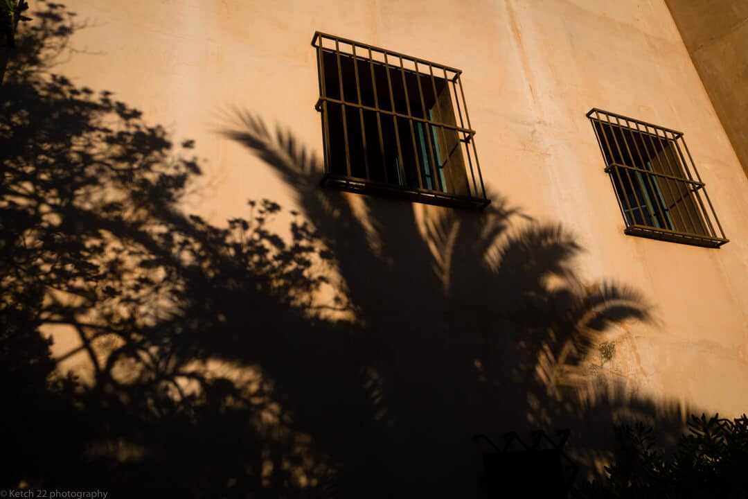 Palm shadows in building at Malaga Wedding venue