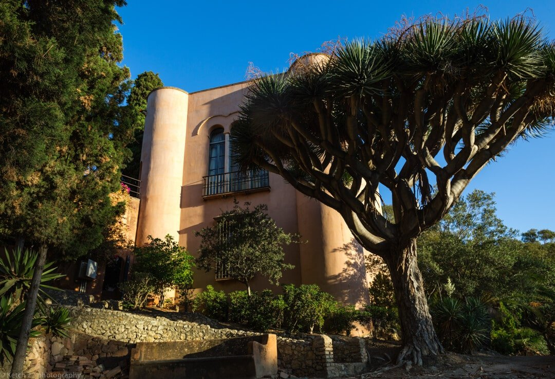 Moorish architecture and tree at Castillo de Santa Catalina wedding venue